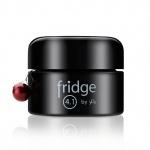Fridge 4.1