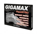 Gigamax Flex Artro