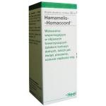 Hamamelis - Homaccord
