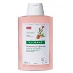 Klorane szampon na bazie wyciągu z piwonii
