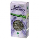 Kwiat lawendy