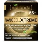 Nano Cell Xtreme Profesjonalny krem odbudowujący 65+ na noc