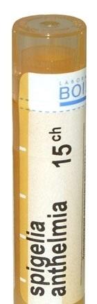 Spigelia anthelmia 15CH