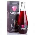 Vitotal Gold dla Mężczyzn